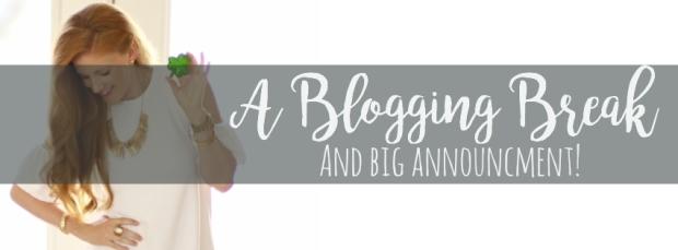 BlogBreak2